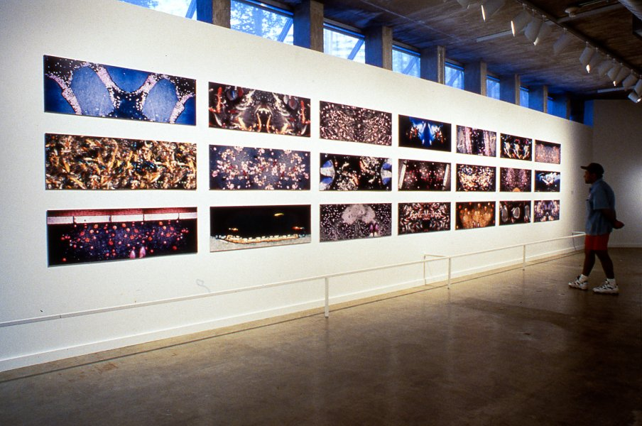 Installation View, Feild of Vision: Five Gulf Coast Photographers. Contemporary Arts Museum, Houston 1998.